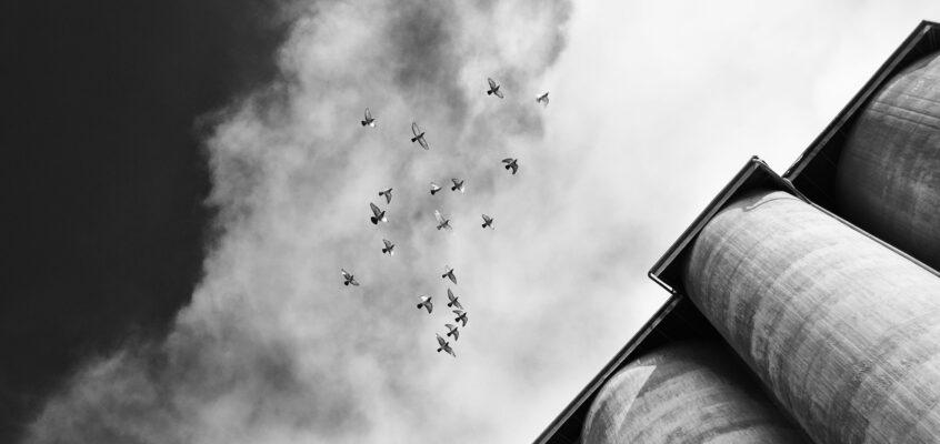 Raum für Geschichten: Abstrakte und bildhafte Fotografie